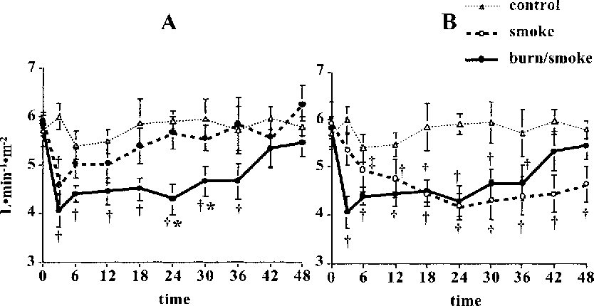 Fig. 6. Changes in cardiac index (CI). A: burn and burn/smoke groups showed a significant decrease in the CI immediately after injury. B: in the smoke group, the CI decreased gradually. *Significant difference between burn and burn/smoke groups, P , 0.05. †Significant difference from baseline value, P , 0.05. ‡Significant difference between smoke and burn/smoke groups, P , 0.05.