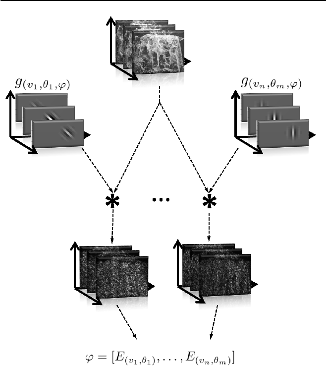 Figure 3 for Spatiotemporal Gabor filters: a new method for dynamic texture recognition