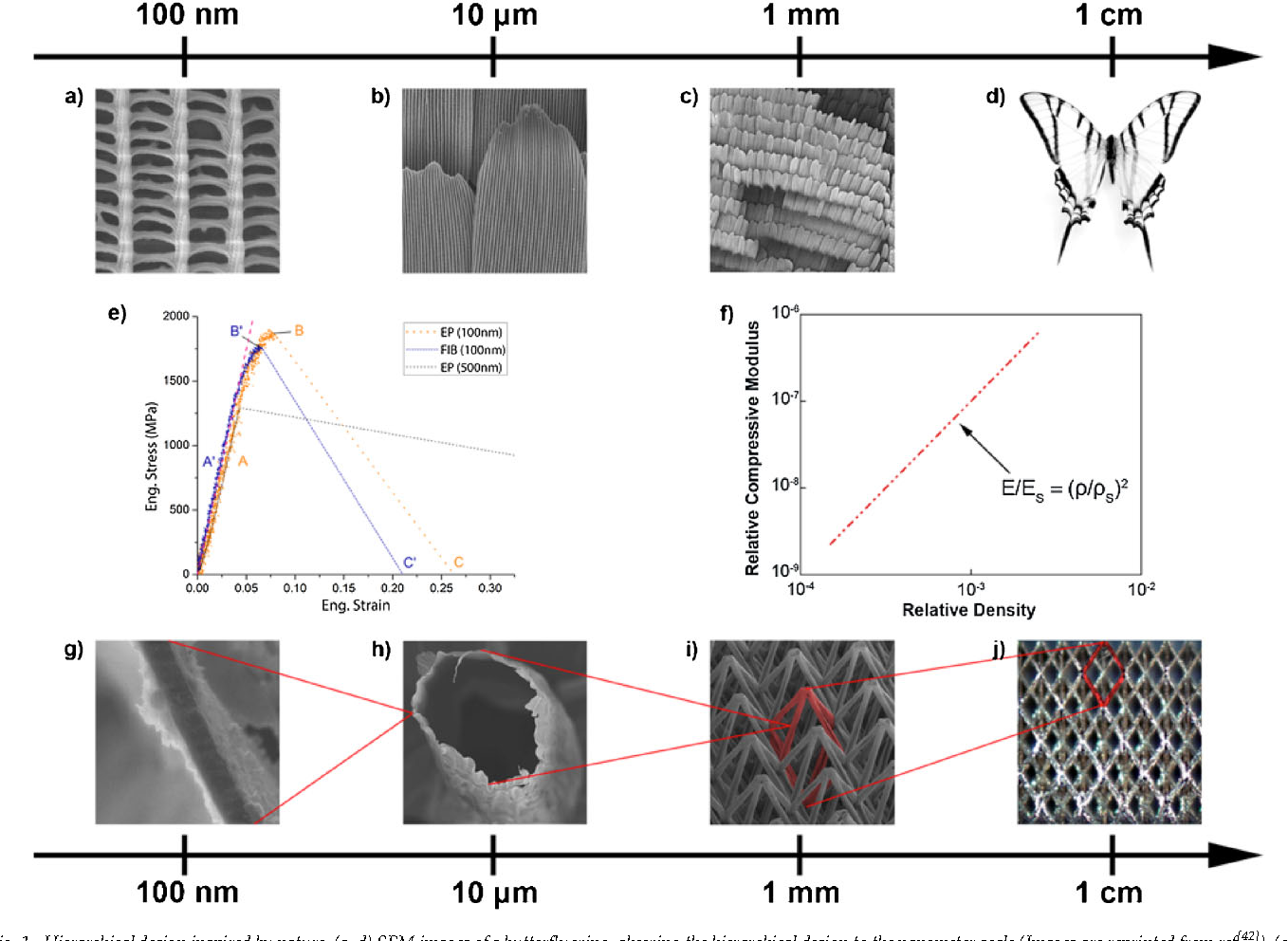 8893dce93a36 Fabrication and Deformation of Metallic Glass Micro-Lattices ...