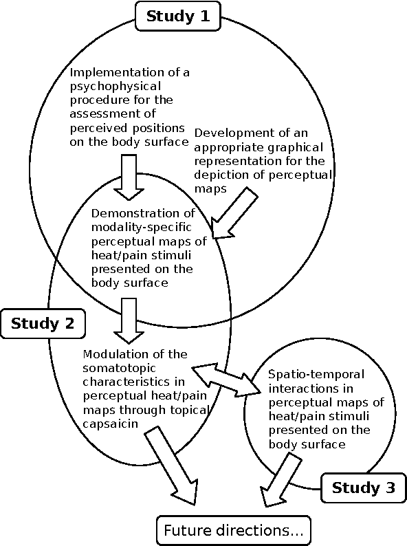 Figure 1 From Psychophysical Perceptual Maps Of Heat And Pain