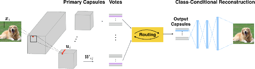 Figure 1 for Effective and Efficient Vote Attack on Capsule Networks