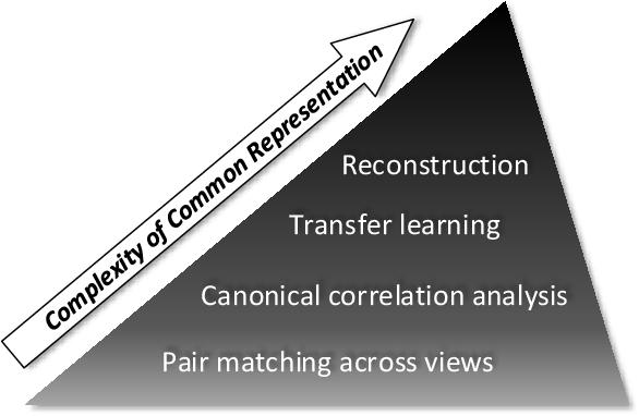 Figure 1 for Task-Driven Common Representation Learning via Bridge Neural Network