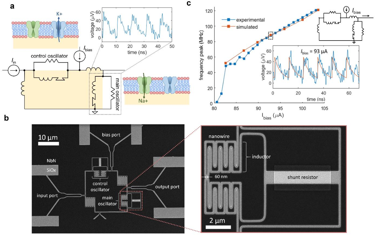 Figure 1 for A superconducting nanowire spiking element for neural networks