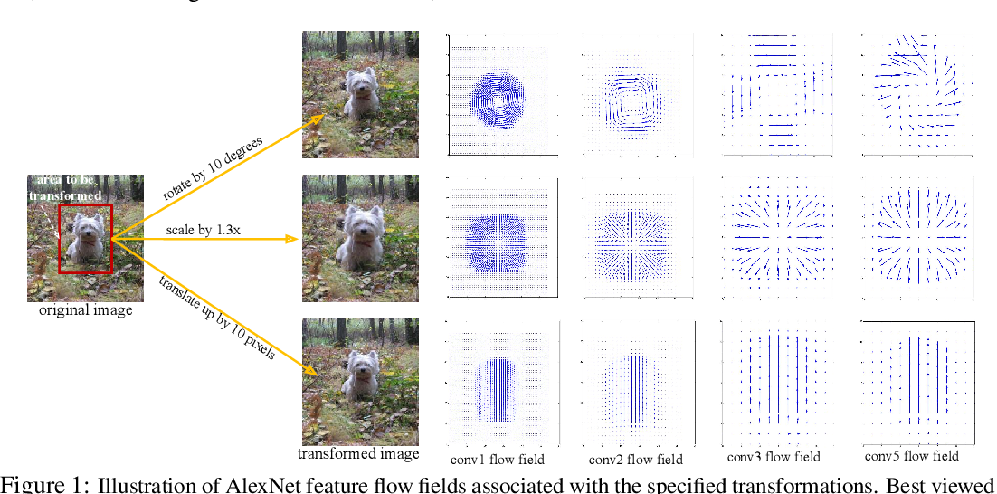 Figure 1 for What Happened to My Dog in That Network: Unraveling Top-down Generators in Convolutional Neural Networks