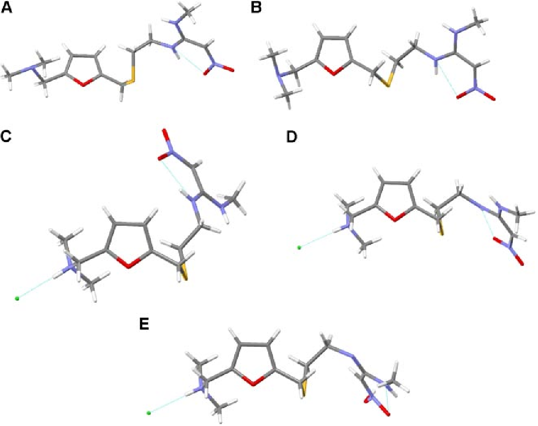 Figure 6. Conformation of RAN-B polymor RAN-HCl form I (C) and the two possible tauto acid (E)), respectively. The strong intramolecu family of compounds and responsible for the E/ state is denoted as dashed lines.