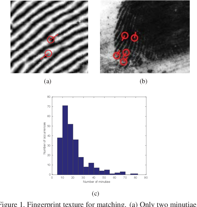 Figure 1 for Latent Fingerprint Recognition: Role of Texture Template