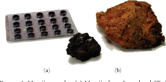 Figure 1: Mumijo samples. (a) Mumijo from Samarkand (Turkestan) (black). (b) Mumijo from Antarctica (yellow). In addition, the extract used in traditional formulation as medicine in Russia (in the background). (a) Mumijo Altai; (b) Mumijo Panacea.