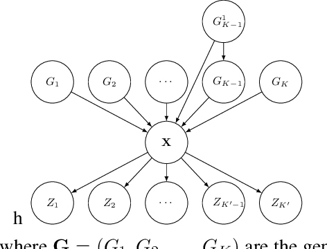 Figure 1 for On the Transfer of Inductive Bias from Simulation to the Real World: a New Disentanglement Dataset