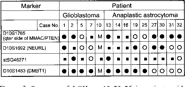 Figure 3. Summary of LOH on 10q23–26 in patients with high-grade astrocytomas. •: LOH (+), ©: LOH (−), : Not informative, M: Microsatellite instability.