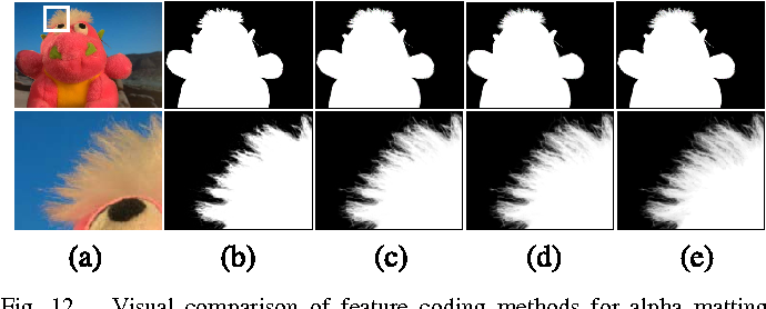 Figure 4 for Sparse Coding for Alpha Matting
