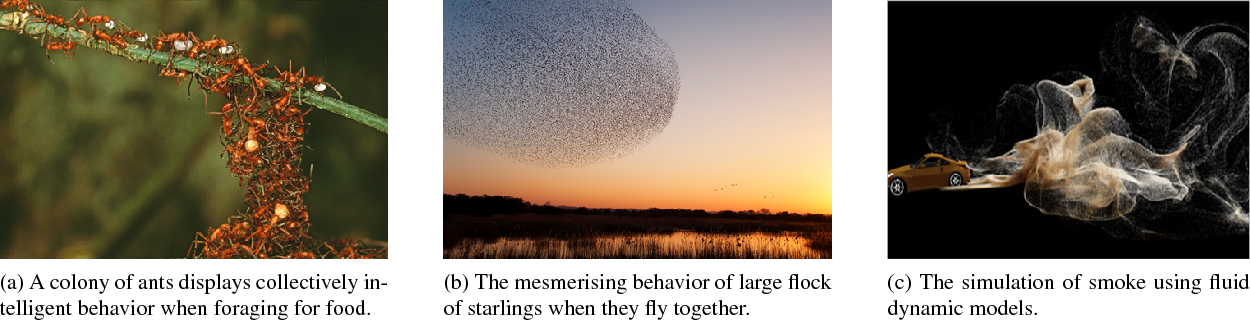 Figure 4 for Crowd Behavior Analysis: A Review where Physics meets Biology