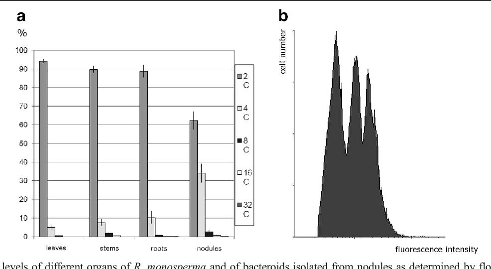 Morphology and anatomy of root nodules of Retama monosperma (L ...