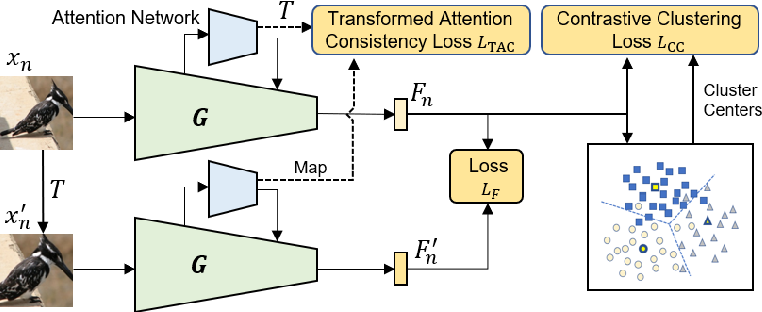 Figure 3 for Unsupervised Deep Metric Learning with Transformed Attention Consistency and Contrastive Clustering Loss