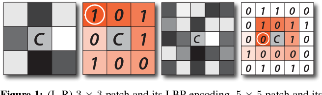 Figure 1 for Local Binary Convolutional Neural Networks
