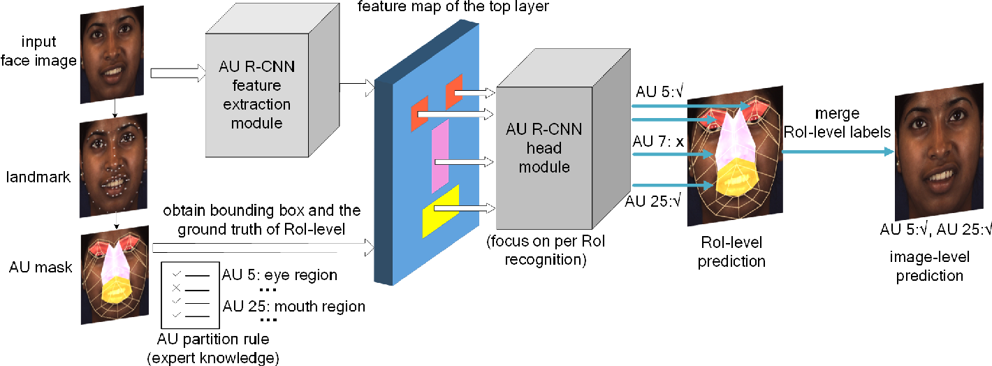 Figure 1 for AU R-CNN: Encoding Expert Prior Knowledge into R-CNN for Action Unit Detection