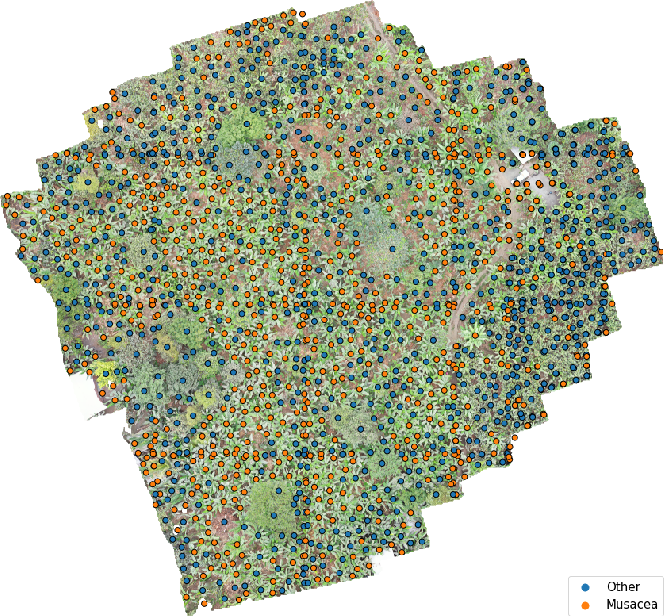 Figure 4 for Tackling the Overestimation of Forest Carbon with Deep Learning and Aerial Imagery