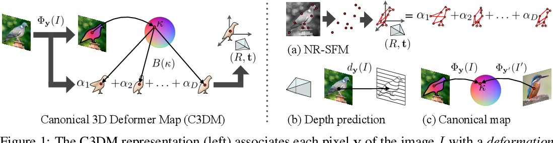 Figure 1 for Canonical 3D Deformer Maps: Unifying parametric and non-parametric methods for dense weakly-supervised category reconstruction