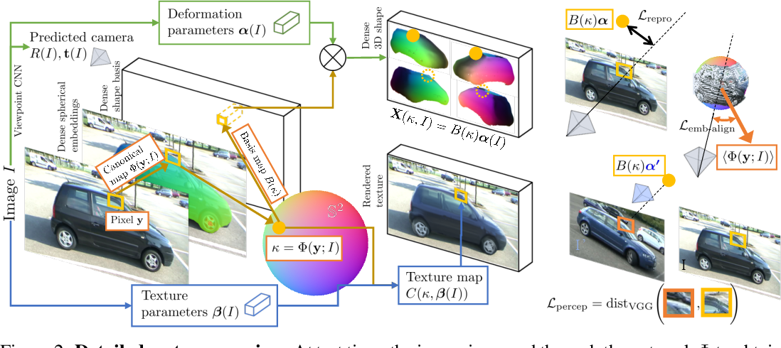 Figure 3 for Canonical 3D Deformer Maps: Unifying parametric and non-parametric methods for dense weakly-supervised category reconstruction