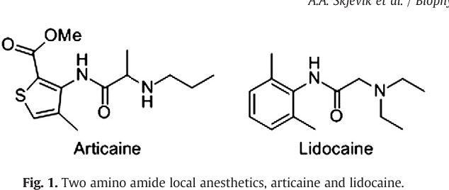 Fig. 1. Two amino amide local anesthetics, articaine and lidocaine.