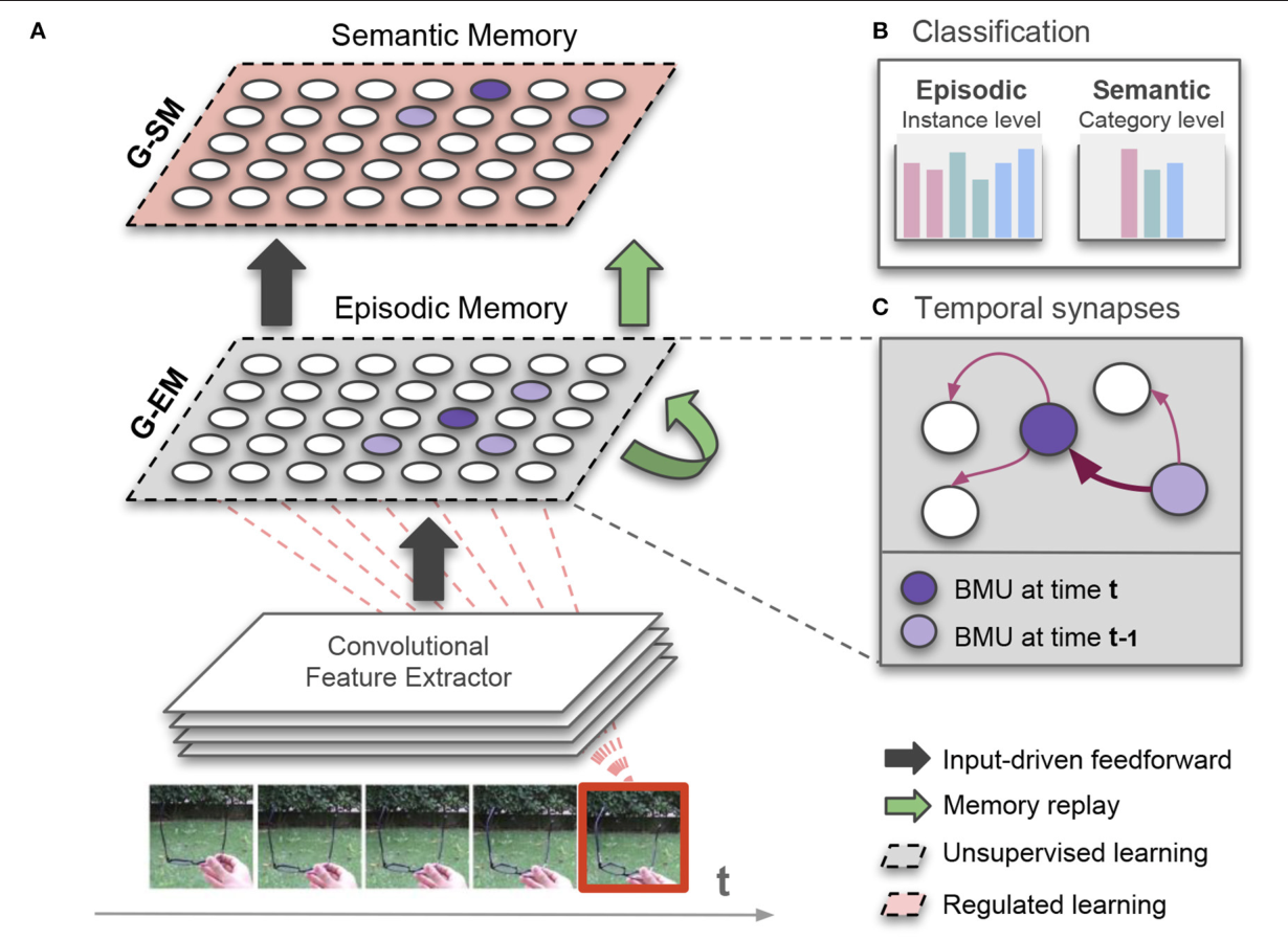 Figure 1 for Lifelong Learning of Spatiotemporal Representations with Dual-Memory Recurrent Self-Organization