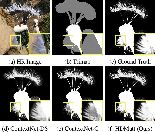 Figure 1 for High-Resolution Deep Image Matting