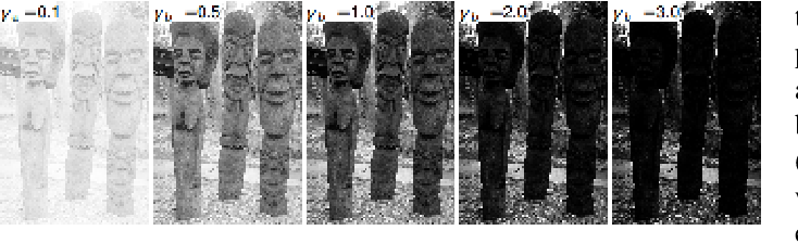 Figure 3 for Blind Inverse Gamma Correction with Maximized Differential Entropy