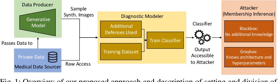 Figure 1 for Defending Medical Image Diagnostics against Privacy Attacks using Generative Methods