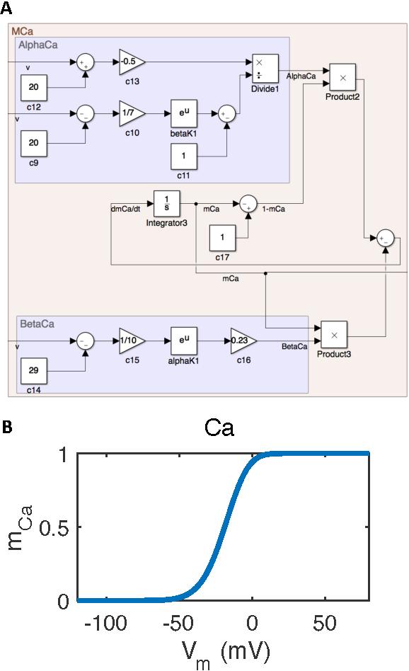 Figure 4 for SIM-CE: An Advanced Simulink Platform for Studying the Brain of Caenorhabditis elegans