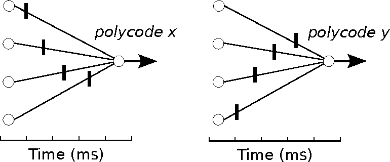 Figure 2 for An Efficient Method for online Detection of Polychronous Patterns in Spiking Neural Network