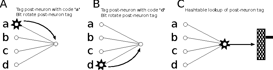 Figure 3 for An Efficient Method for online Detection of Polychronous Patterns in Spiking Neural Network