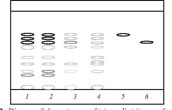 Iodine 20 MG/ML Topical Solution - Semantic Scholar