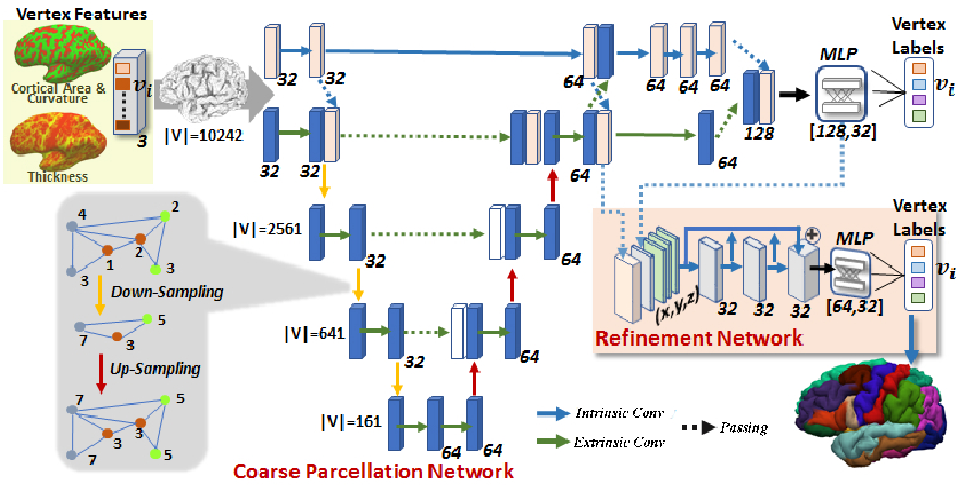 Figure 2 for Geometric Brain Surface Network For Brain Cortical Parcellation