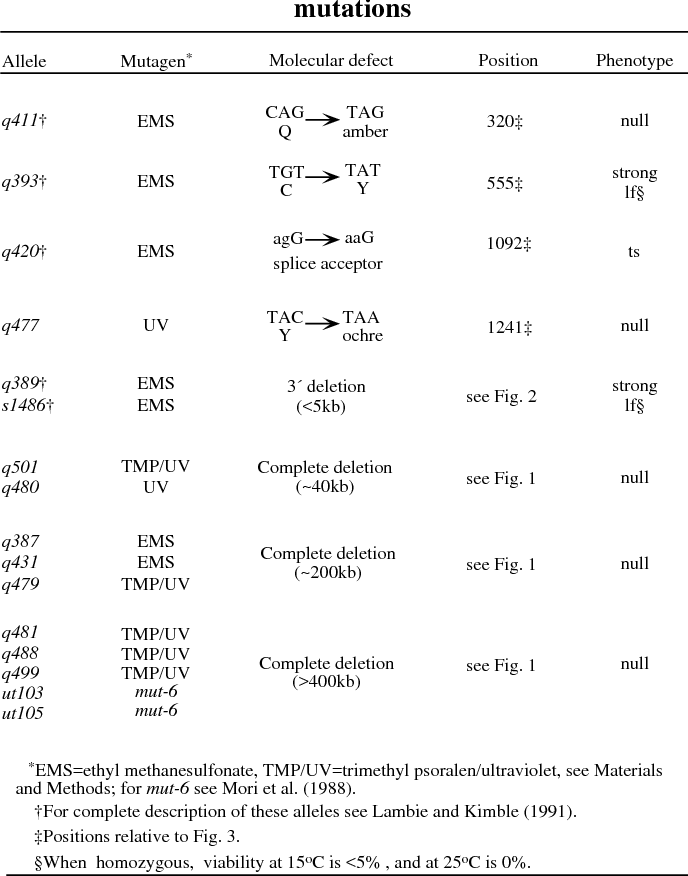 Table 2 from lag-2 may encode a signaling ligand for the GLP