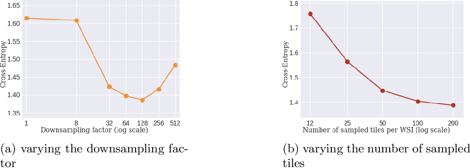 Figure 4 for Sparse convolutional context-aware multiple instance learning for whole slide image classification