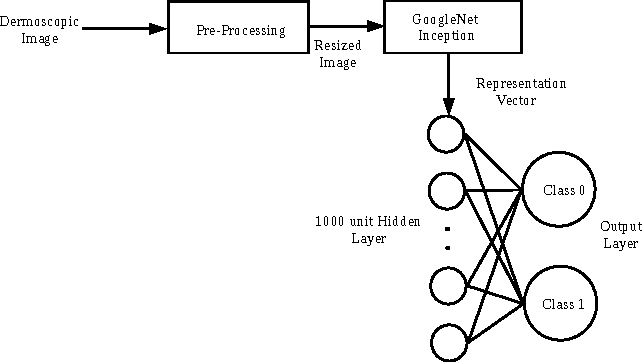 Figure 1 for Deep Learning for Skin Lesion Classification