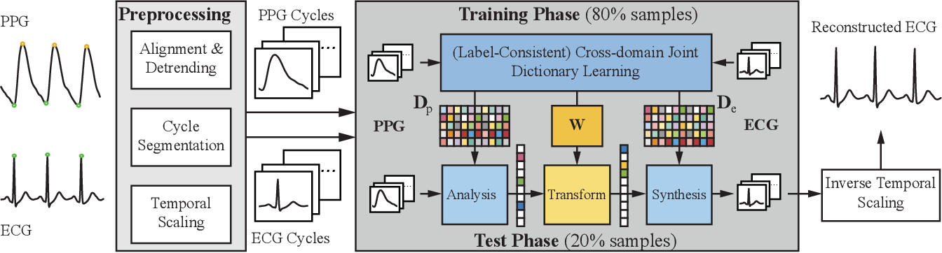 Figure 1 for Cross-domain Joint Dictionary Learning for ECG Inference from PPG