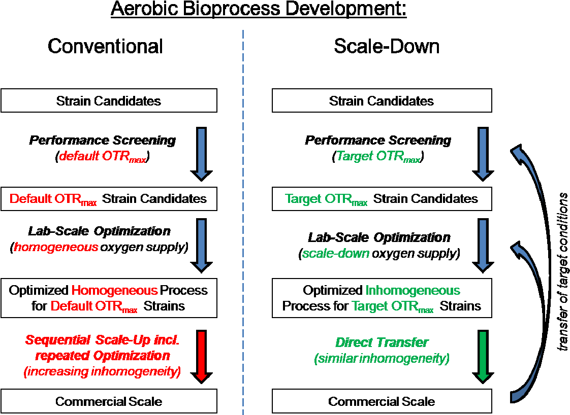 PDF] Scale-Down of oxygen supply in bioprocess development