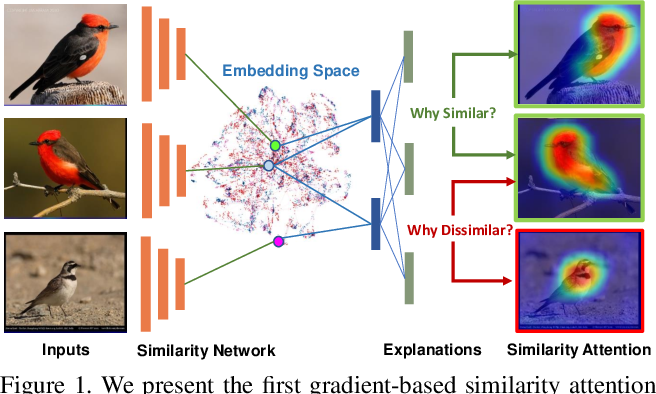 Figure 1 for Learning Similarity Attention