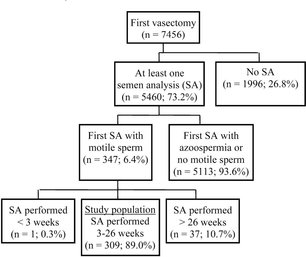 Delayed vasectomy success in men with a first postvasectomy semen ...