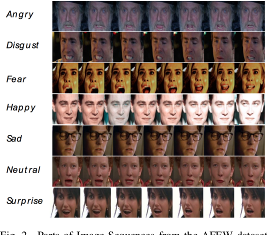 Figure 2 for Training Deep Neural Networks with Different Datasets In-the-wild: The Emotion Recognition Paradigm