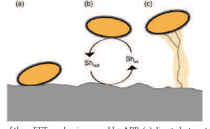 PDF] Microbial Fuel Cells for Wastewater Treatment - Semantic Scholar