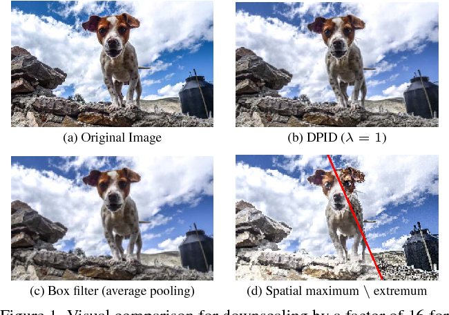 Figure 1 for Detail-Preserving Pooling in Deep Networks