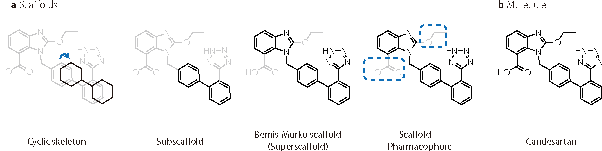 Figure 1 for DeepScaffold: a comprehensive tool for scaffold-based de novo drug discovery using deep learning