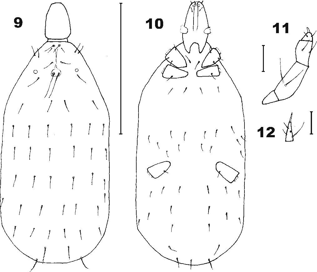 figure 9–12