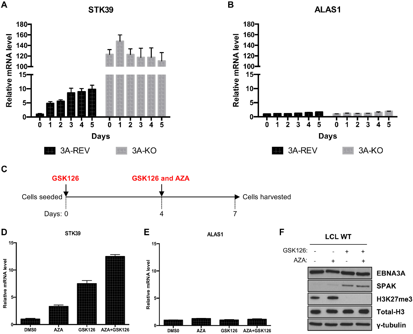Figure 9 from Epstein-Barr Virus (EBV) Latent Protein EBNA3A ...