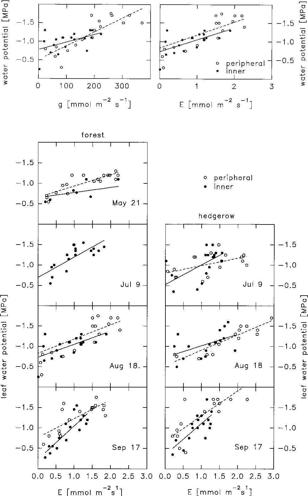 Figure 9 From Leaf Water Relations Of Black Alder Alnus Glutinosa