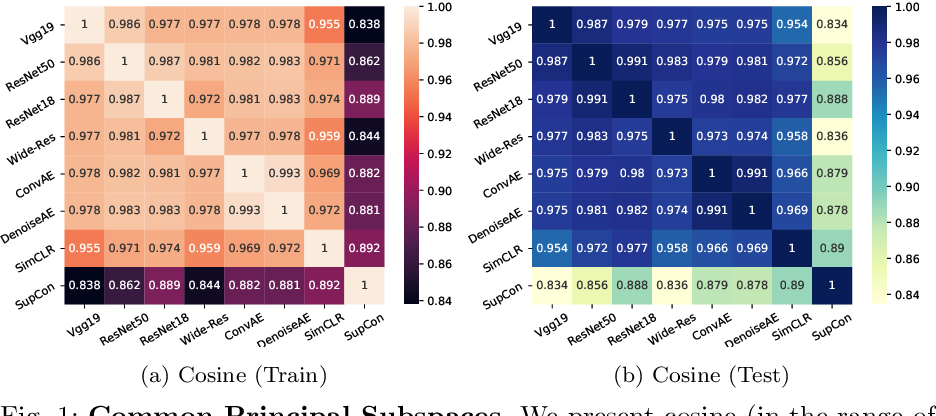 Figure 1 for Exploring the Common Principal Subspace of Deep Features in Neural Networks