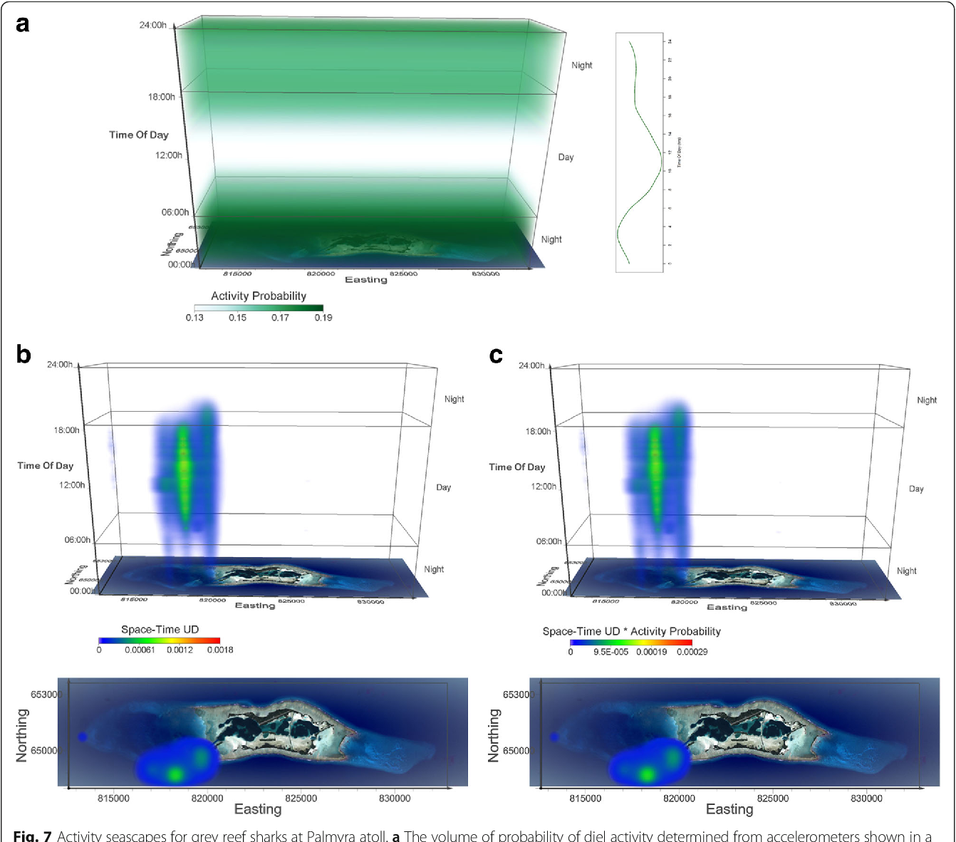 Fig. 7 Activity seascapes for grey reef sharks at Palmyra atoll. a The volume of probability of diel activity determined from accelerometers shown in a space-time cube, where each voxel gets the value of respective probability based on the time in the voxel. Darker/lighter green voxels in the probability volume correspond to higher/lower probability values in the chart. b Space-time density volume for grey reef sharks (n = 17). The bottom panel shows the projection of the volume onto the two geographic dimensions, i.e. the map of Palmyra atoll. Note that this is a view from above the 3D UD volume and not a 2D UD surface. c Activity seascape for grey reef sharks (n = 17). The bottom panel shows the projection of the volume onto the map of Palmyra atoll. Voxel size in all volumetric representations is 100 m× 100 m× 10 min, creating a Space-Time volume of 202 × 56 × 144 voxels (20.2 km× 5.6 km× 24 h)