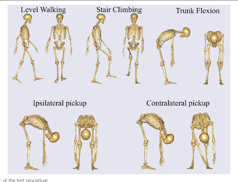 Influences of lumbar disc herniation on the kinematics in multi ...