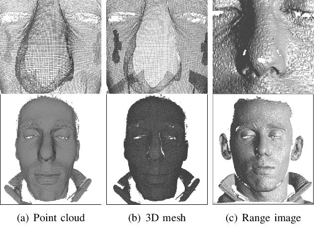 Figure 2 for 3D Face Recognition: A Survey